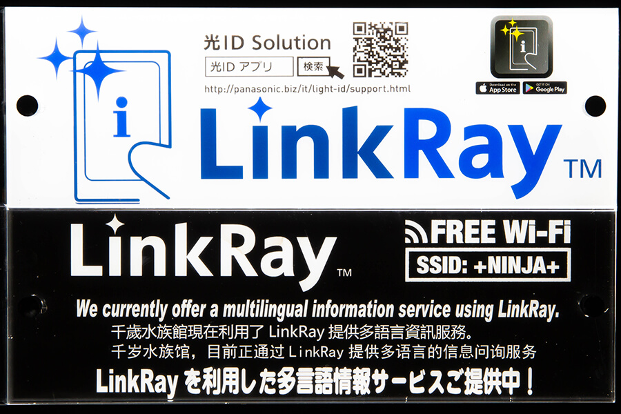Link-Ray
