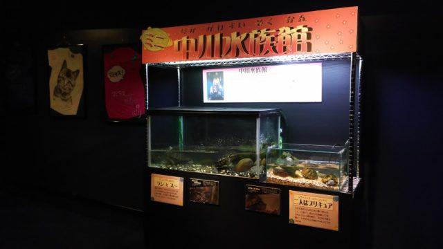 中川水族館