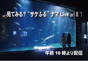 """「見てみる!?""""サケふる""""ナマLive」のお知らせ"""