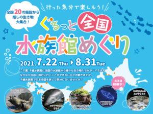 2021年度夏季企画展「全国水族館めぐり展」7/22より開催!!
